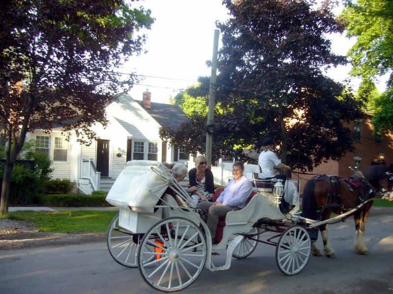 Horse and carriage rides pass the front of the cottage!