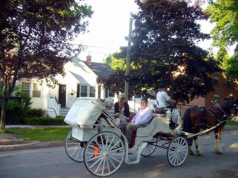 Paseos a caballo y en carro pasan al frente de la casa!