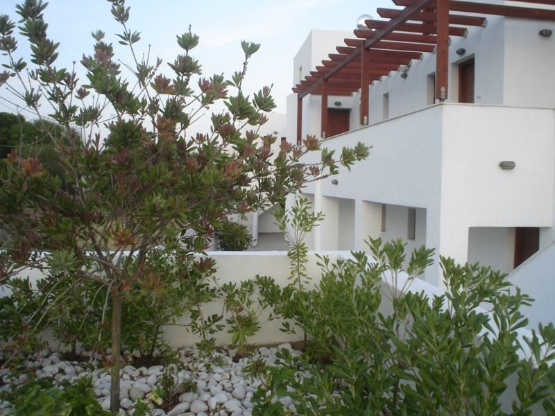George Studios skyros, holiday rental in Trachi