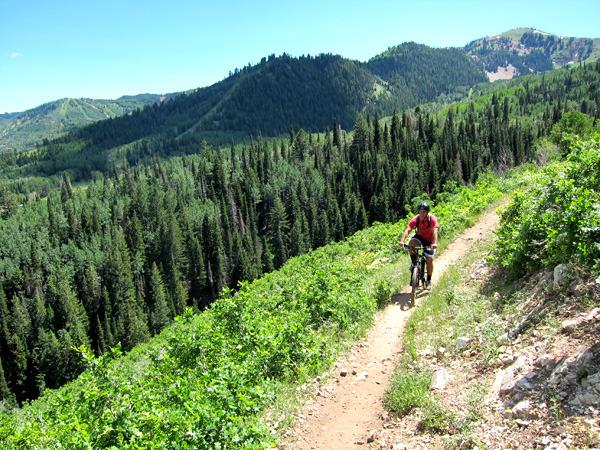 Mountain Biking, Hiking, Running & exploring the beautiful trails straight from our condo!