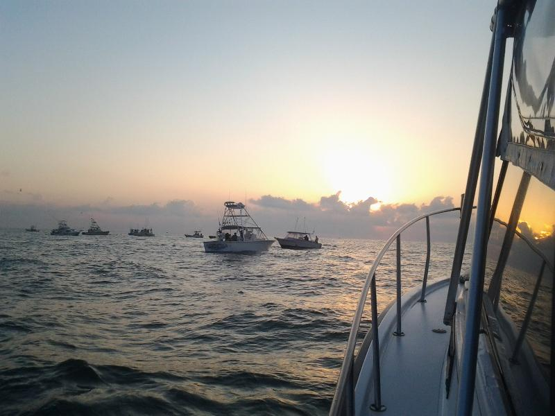 we can help you out to charter a fully manned and equiped boat for off shore fishing.