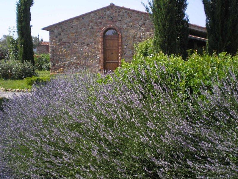 Antico Convento di Montepozzali  Teresa, vacation rental in Massa Marittima