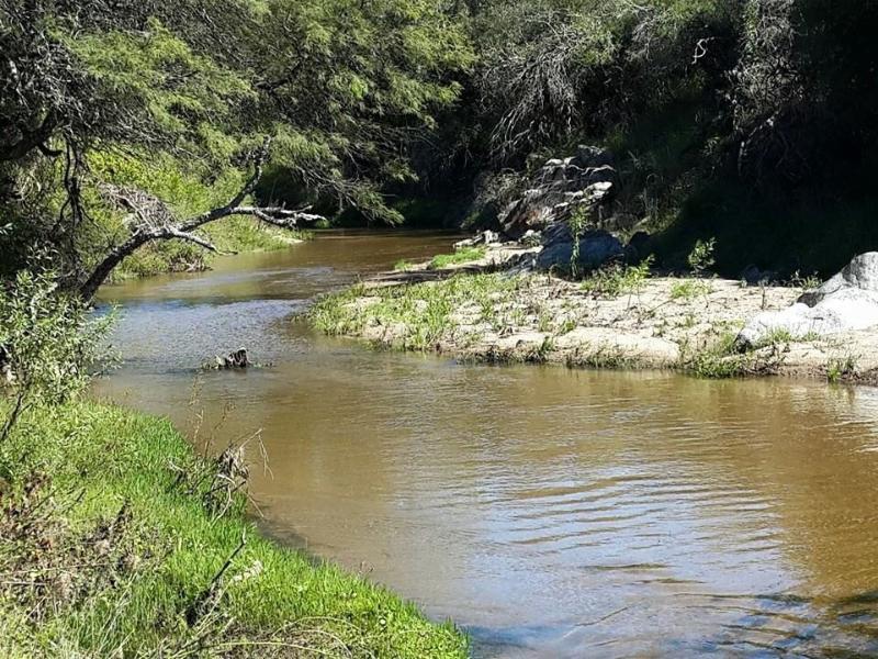 Cerca del río, ideal para caminatas o paseos a caballo.