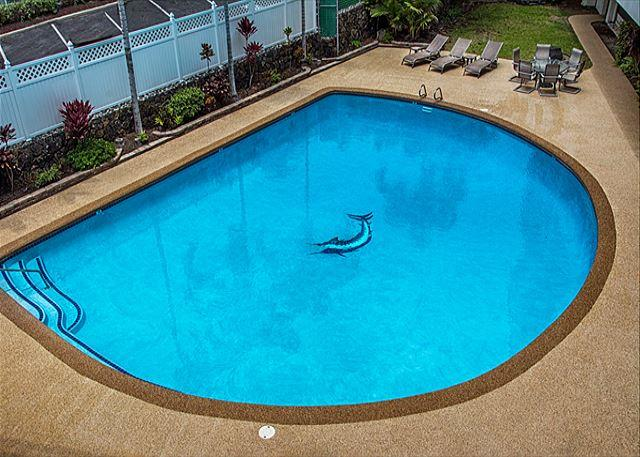 Over sized pool!