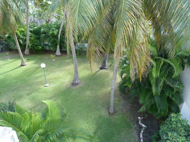Vue sur le jardin exotique depuis la terrasse.
