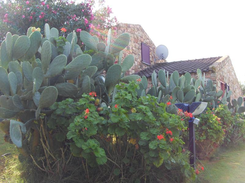 villa bea a Chia 200mt dalla spiaggia Dune Campana, casa vacanza a Domus de Maria