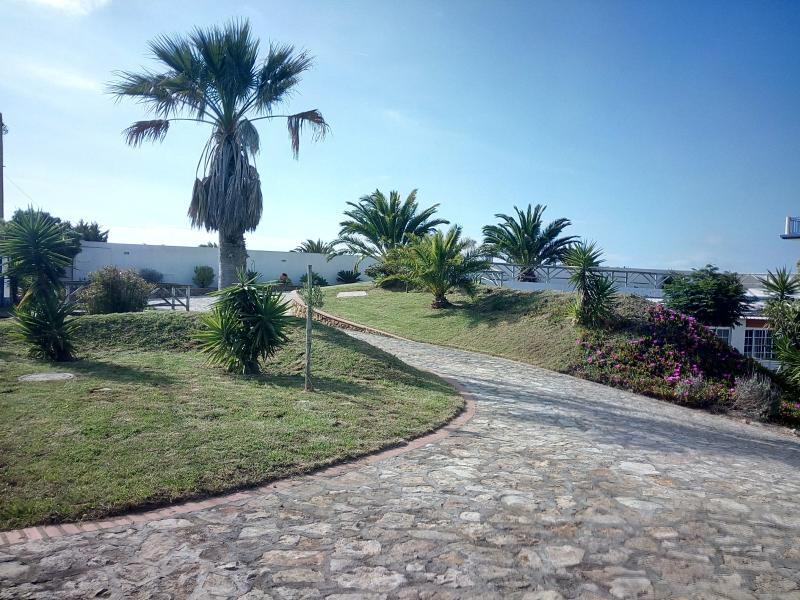 Piscina aquecida-jardim-actividades- 2/4 - Rosa, holiday rental in Casais de Sao Lourenco