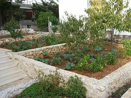 jardín (casa y alrededores)