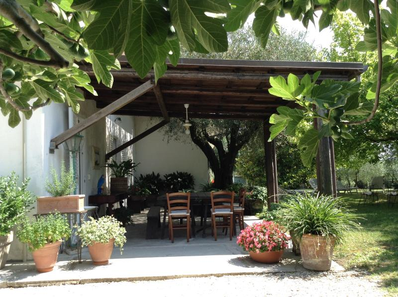 trecentolivi bb, location de vacances à Morro d'Alba