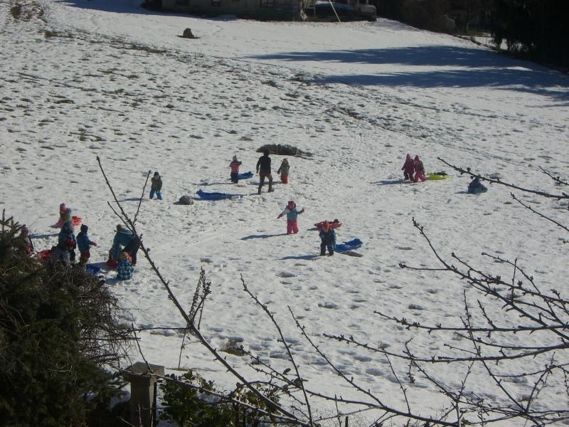 Children sledging behind the property