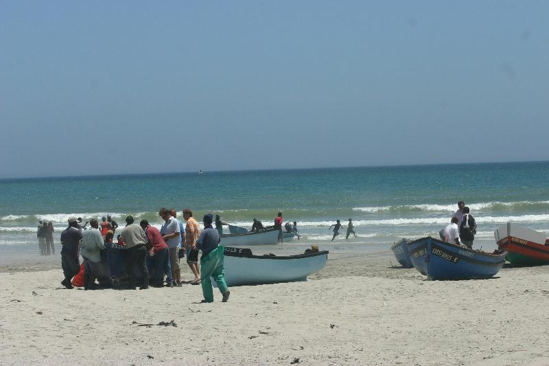 Buy fresh fish from the fisherman's boats on the beach - walking distance from Soli deo Gloria.