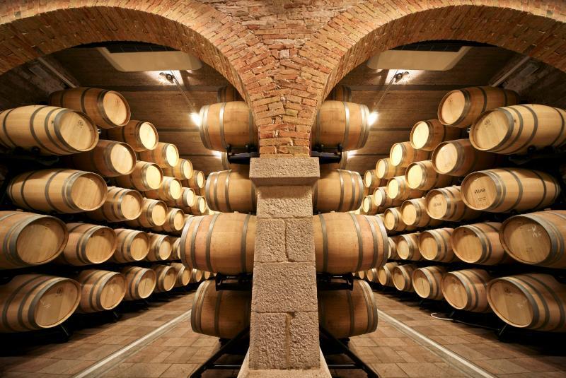 Winery in Bol