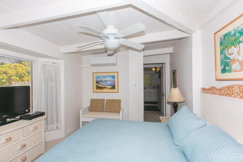 Bedroom 1 Long View