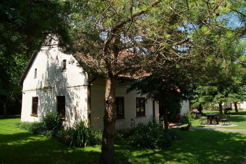 Country House Dzika Kaczka, vacation rental in Szwalk