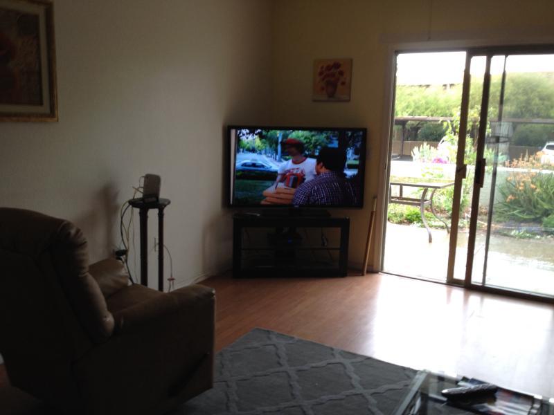 Vizieo 32 inch TV