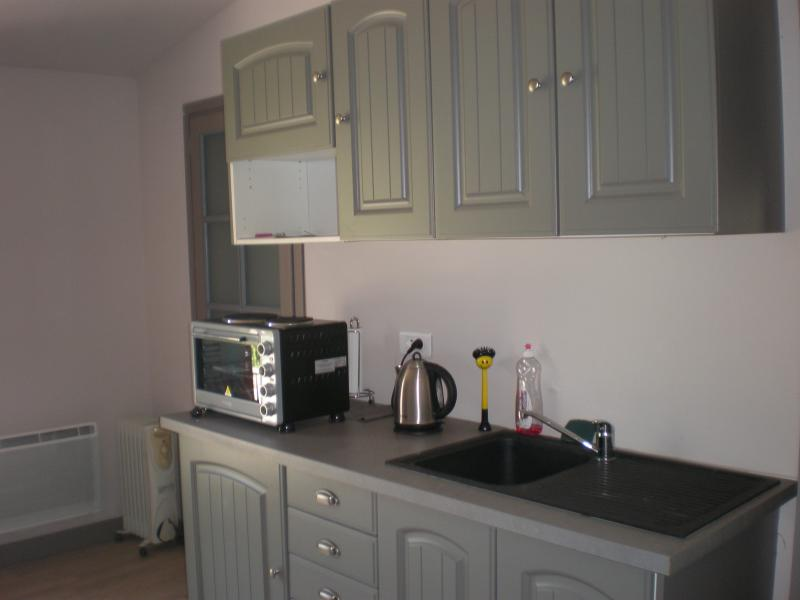 kitchenette with fridge, sink, mini oven, two ring hob, kettle and coffee machine