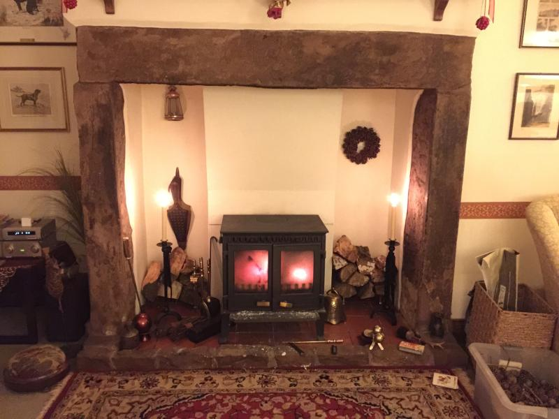 Log burning stove makes evenings safe and warm
