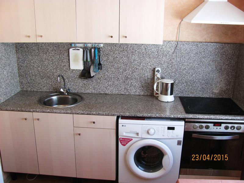 1-bedroom apartment on 1st floor at Olimpijskaya-79 - kitchen