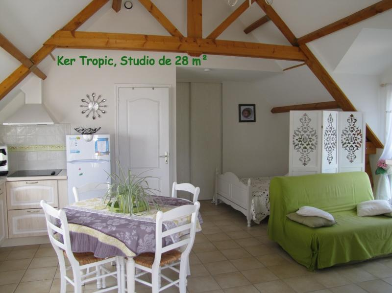 Ker Tropic studio on the first floor with garden in the DRC