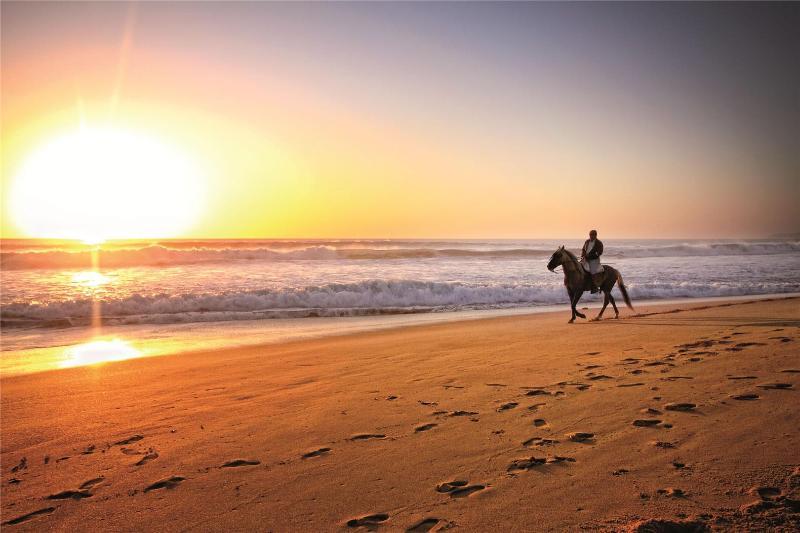 Paseos y rutas a caballo por la playa