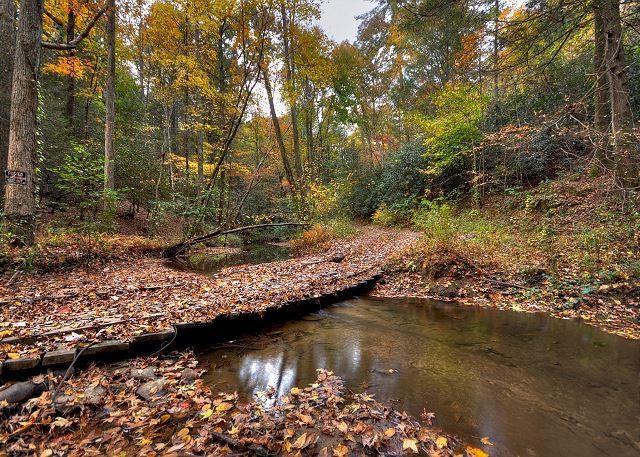 Private And Secluded Cabin With Creek Frontage On Laurel