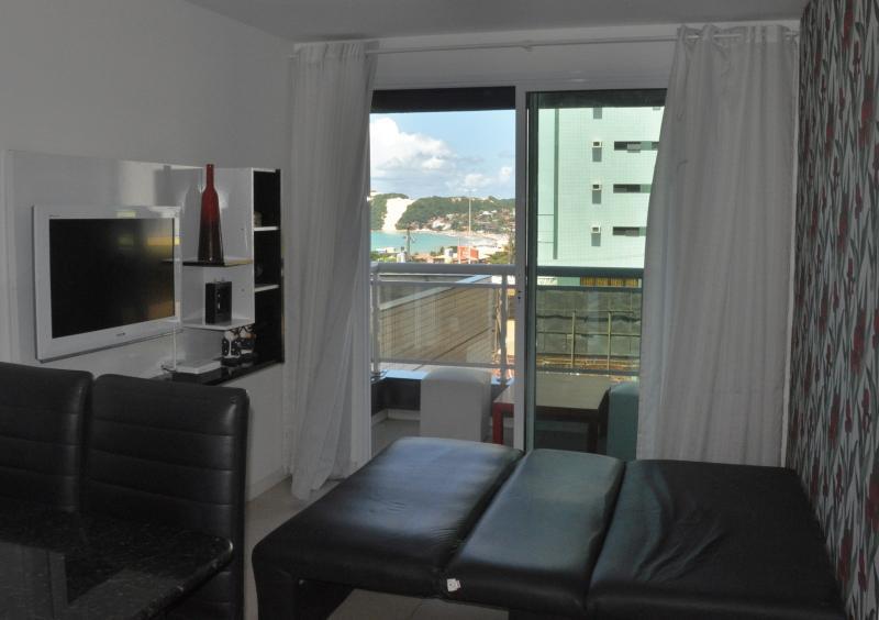 Salon avec divan-lit et TV