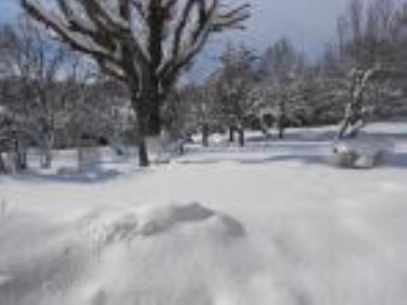 Le Mas des Chardons en hiver