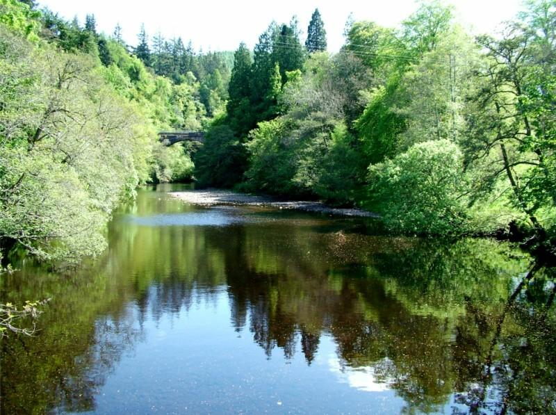 The Wee Cottage by Loch Ness, holiday rental in Invermoriston