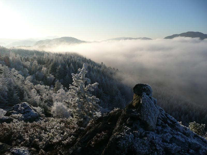 Inversion in the Glen in winter.  Fabulous walk to this viewpoint directly from cottage.