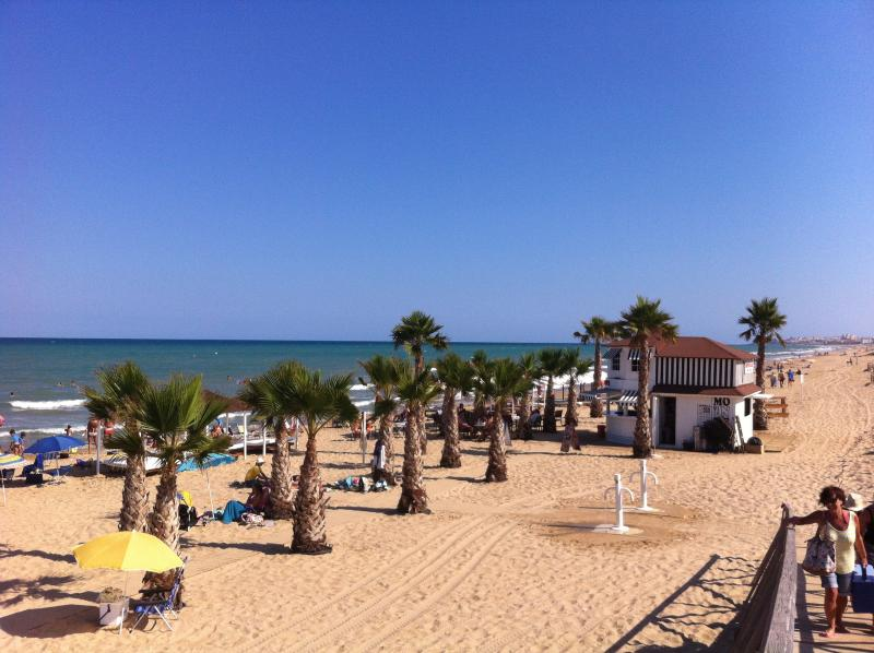 beach guardamar, with bar and restaurants.