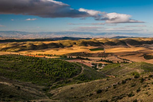 Views from S. Gregorio Ostiense