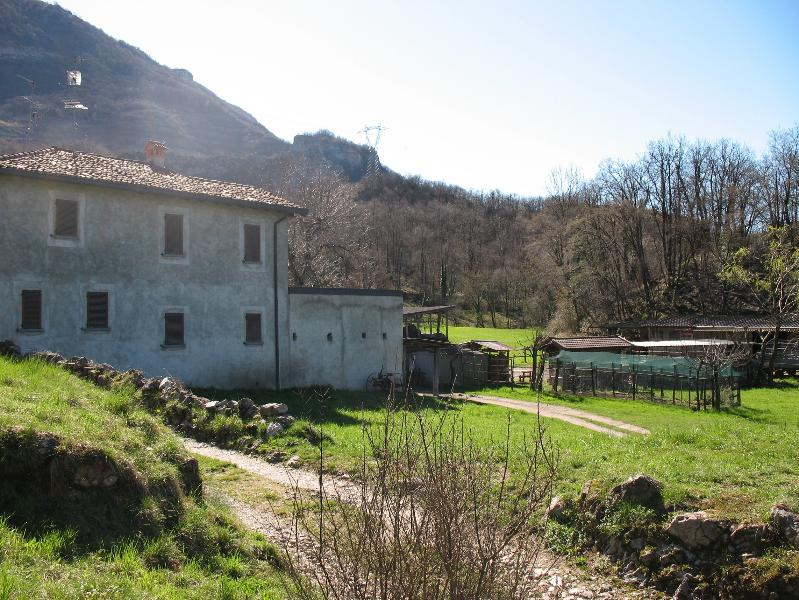 Fattoria a Neguggio, Neguggio site farm