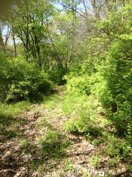 Paysages magnifiques sur Private Walking trails-partie de propriété