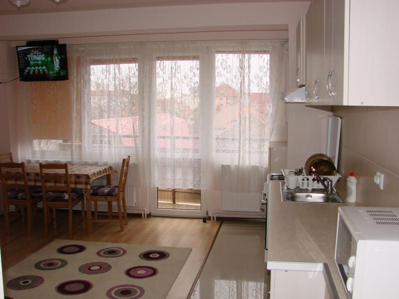 Friendly central apartment, vacation rental in Sibiu
