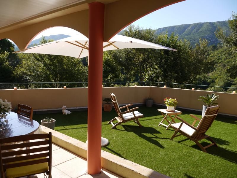 In front of the Mount Sainte Victoire, holiday rental in Saint Antonin sur Bayon