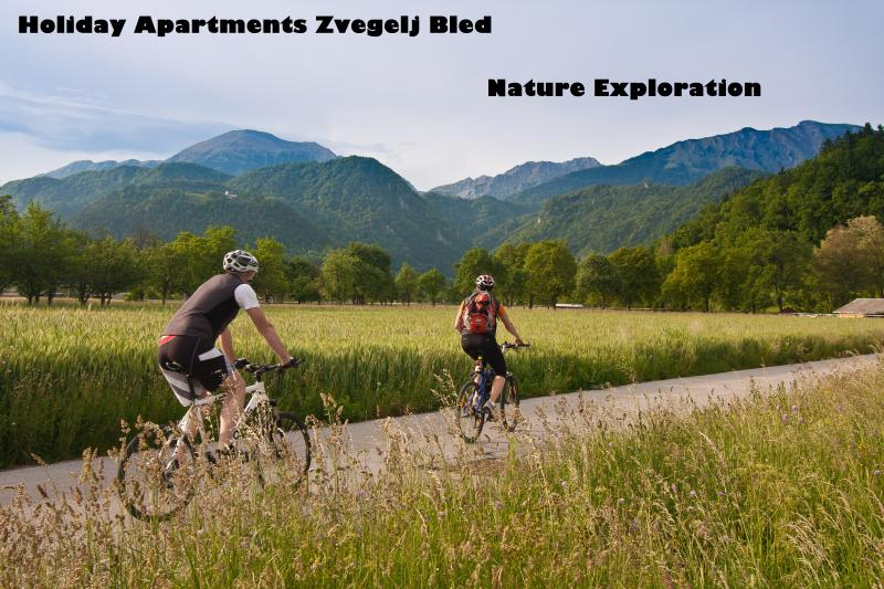 Local exploration with bikes
