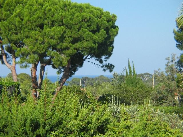 Great apartment on the Cap d'Antibes, holiday rental in Cap d'Antibes