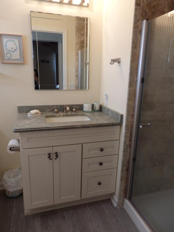 Main bathroom with large tiled shower