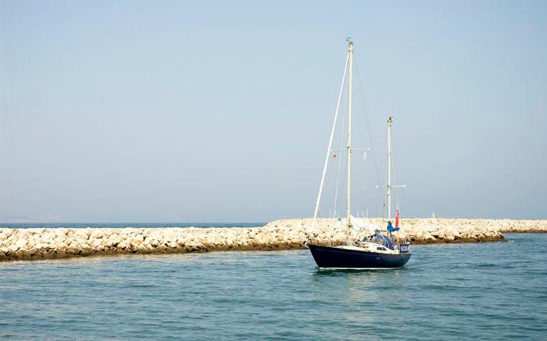 Boat Trips from the Marina