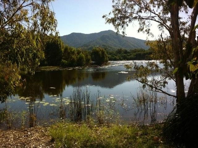Cattana Wetlands nearby to explore ~ fabulous birdlife