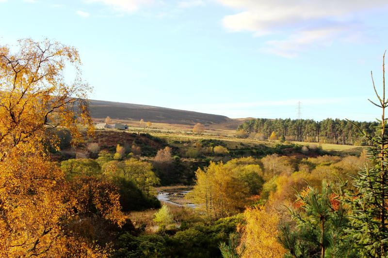 One of the spectacular views at Kellas Estate