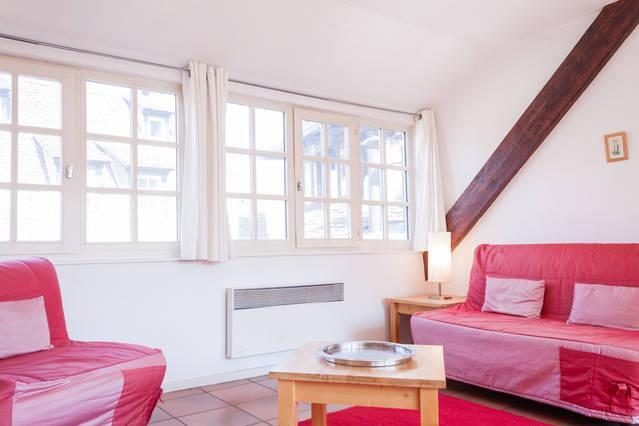2 pièces 42 m² Strasbourg centre, location de vacances à Strasbourg