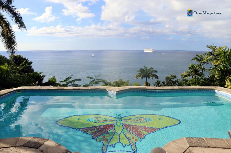 The View Over the Butterfly Pool...