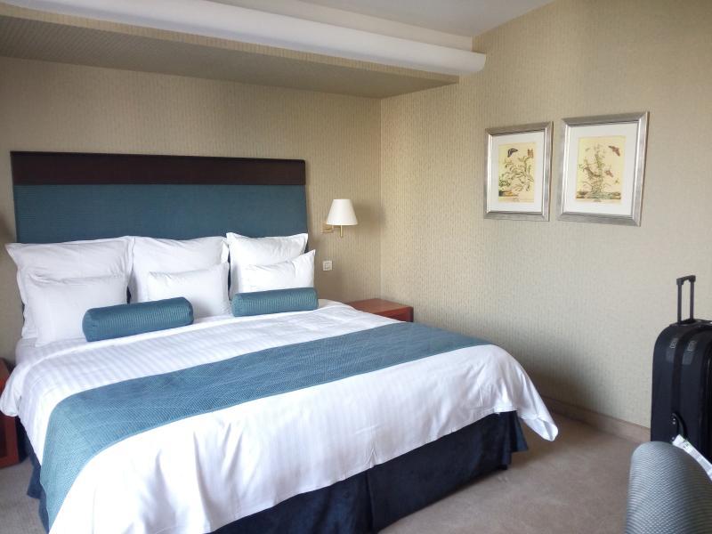 BOSS- De Lux (adults), vacation rental in Hersonissos