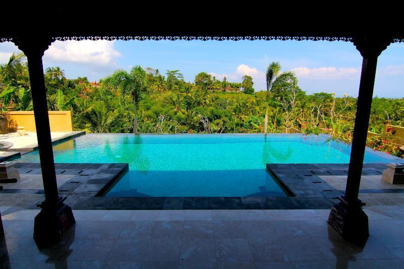Incredible 12x5 Infinity Edge Lap Pool