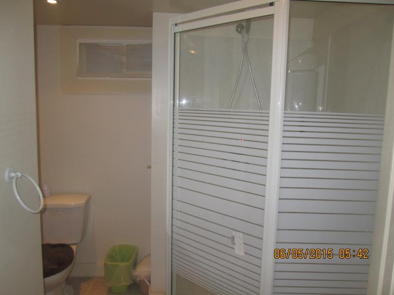 Washroom with standing shower
