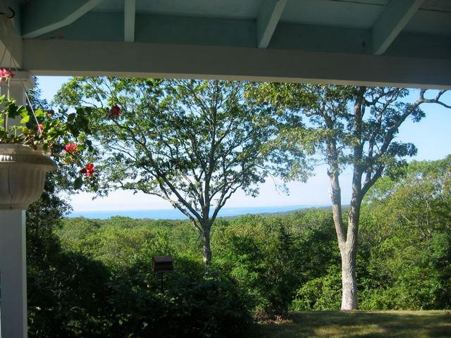 View from the porch by day