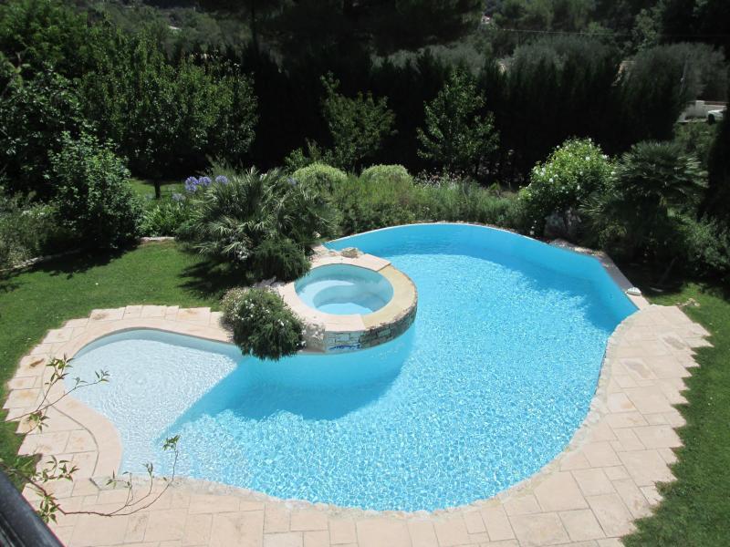 Piscine à débordement de forme libre avec piscine individuelle