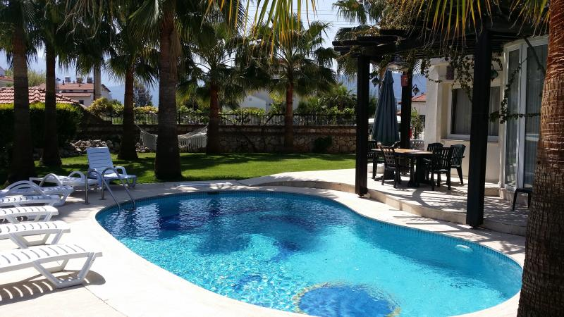 pool and garden 2015