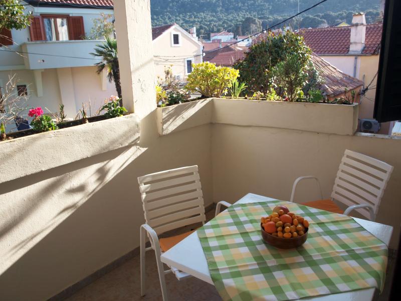 Apartman Bakaric, holiday rental in Veli Lošinj
